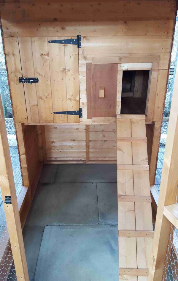 Hen House 604 with optional nest box